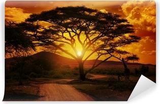 Zelfklevend Fotobehang Afrika Zonsondergang