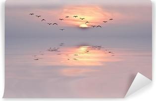 Zelfklevend Fotobehang De zachte kleuren van de dageraad