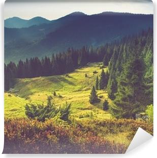 Zelfklevend Fotobehang Mooie zomer berglandschap op zon.
