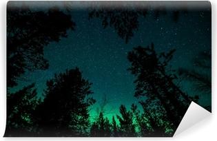 Zelfklevend Fotobehang Noorderlicht boven bomen in Noorwegen