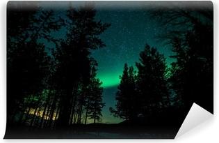 Zelfklevend Fotobehang Noorderlicht boven bomen in Zweden