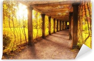 Zelfklevend Fotobehang Prachtige herfst park