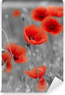 Zelfklevend Fotobehang Rode papavers op b / w veld