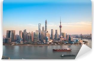 Zelfklevend Fotobehang Shanghai Lujiazui panoramisch uitzicht
