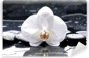 Zelfklevend Fotobehang Zen of spa stilleven op zwart met witte orchidee