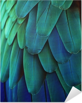 Zelfklevende Poster Araveren (Blauw / Groen)