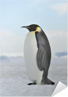 Zelfklevende Poster Emperor Penguin