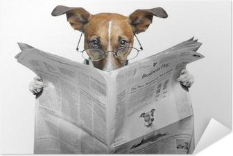 Zelfklevende Poster Hond lezen van een krant