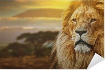 Zelfklevende Poster Leeuw portret op savanne achtergrond en Mount Kilimanjaro