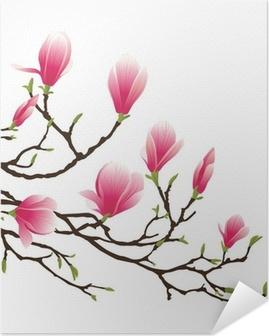 Zelfklevende Poster Magnolia bloesem
