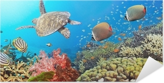 Zelfklevende Poster Onderwater panorama