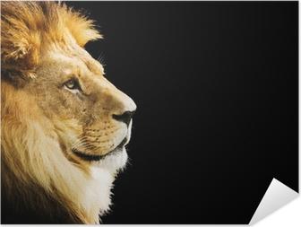 Zelfklevende Poster Portret van de leeuw met kopie ruimte op zwarte achtergrond