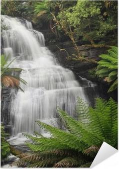Zelfklevende Poster Waterval van het regenwoud
