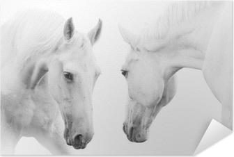 Zelfklevende Poster Witte paarden