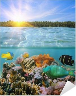 Zelfklevende Poster Zonsondergang en kleurrijke onderwater leven in zee