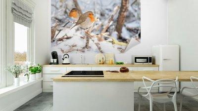Robin Redts Sitting In Snow Vinyl Wall Mural Birds