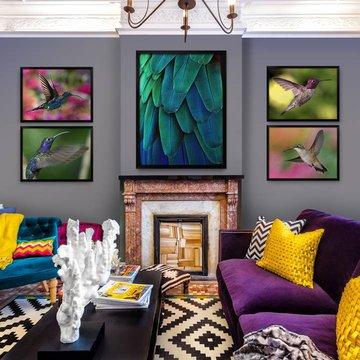Posters till vardagsrummet - Kolibrier