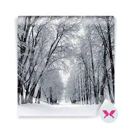 Papier peint - Paysage d'hiver