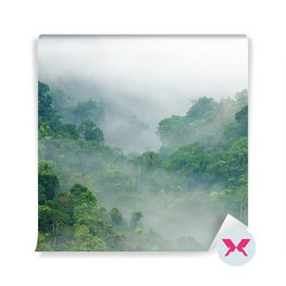 Fototapete - Wald im Nebel