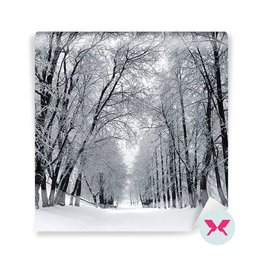 Carta da Parati - Paesaggio invernale
