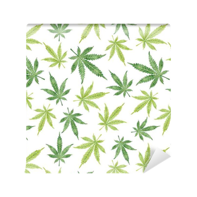 papier peint motifs feuilles de marijuana aquarelle transparente motif vecteur de fond de. Black Bedroom Furniture Sets. Home Design Ideas
