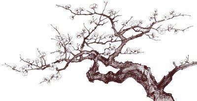 Nálepka na Stěny Cherry tree