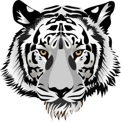 Nálepka na Stěny Tiger hlavy. Vektor