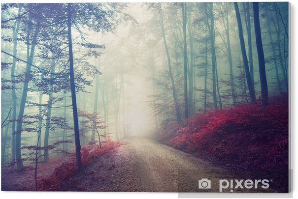 Magical forest path Acrylic Print - Forest