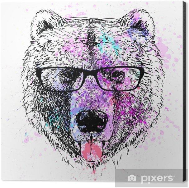 bear character colorful portrait Aluminium Print (Dibond) - Lifestyle