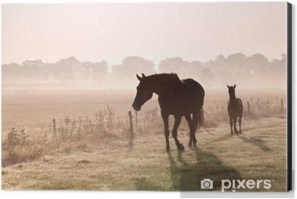 horse and foal silhouettes in fog Aluminium Print (Dibond) - Themes