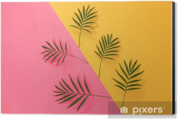Palm leaves on vibrant pink and yellow background Aluminium Print (Dibond) - Plants and Flowers