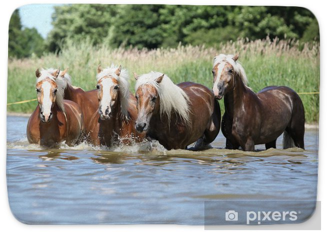 Batch of chestnut horses running in the wather Bath Mat ... - photo#26