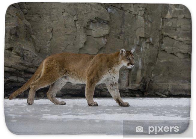 klasyczne dopasowanie świetne dopasowanie oficjalny sklep Puma or Mountain lion, Puma concolor Bath Mat
