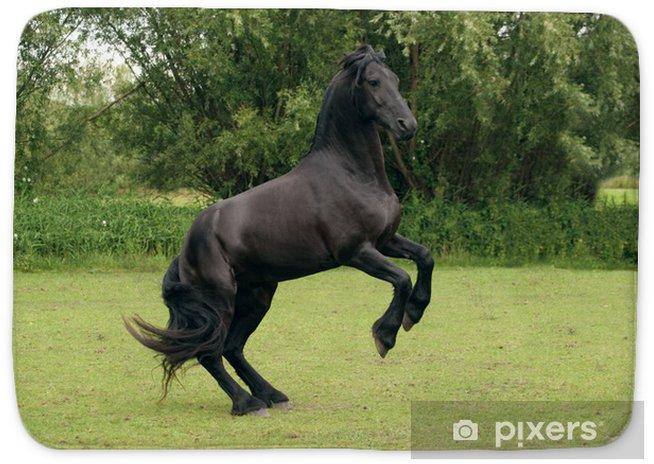 Rearing Black Horse Bath Mat Pixers 174 We Live To Change