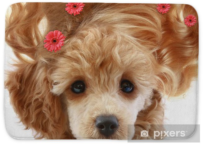 Small Apricot Poodle Puppy With Long Hair Bath Mat