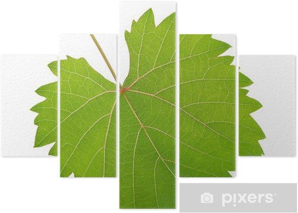 Asma Yaprağı Beş Parçalı Pixers Haydi Dünyanızı Değiştirelim