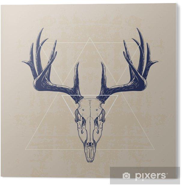 Bild auf Acrylglas deer skull - Säugetiere