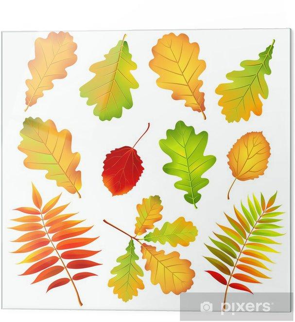 Cama Baskı Sonbahar Yaprakları Vektör çizim