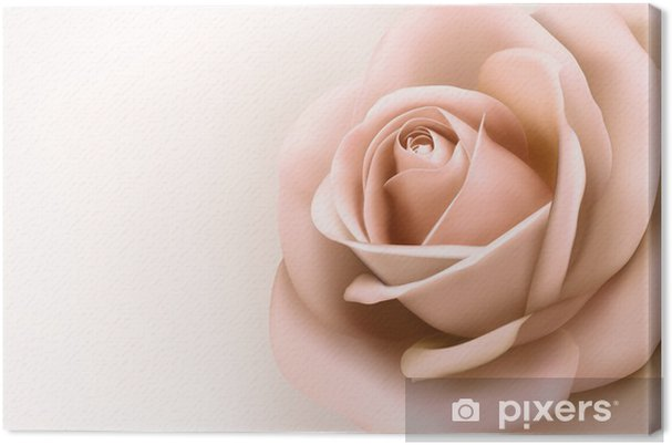 Canvas Achtergrond met mooie roze roos. Vector - Thema's