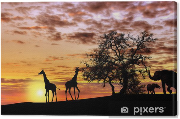Canvas Afrikaanse zonsondergang - Thema's