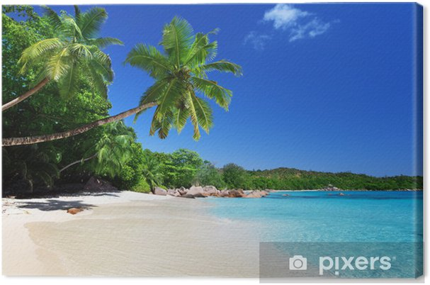 Canvas Anse Lazio strand op Praslin island, Seychellen - Water