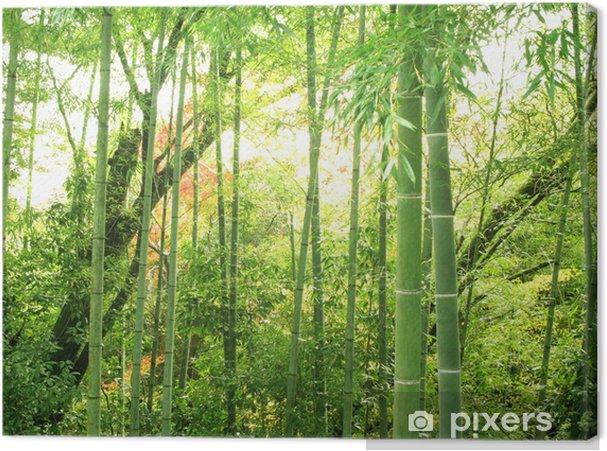 Canvas Bamboebos - Thema's