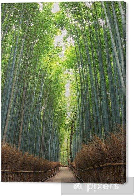 Canvas Bamboo Forest in Japan, Arashiyama, Kyoto - Planten