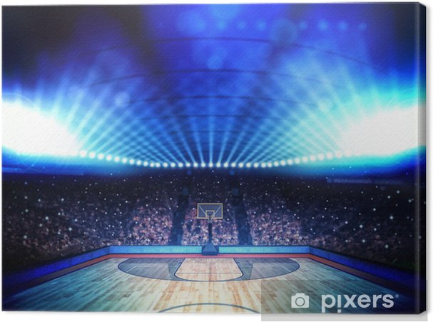 Canvas Basketbal arena -