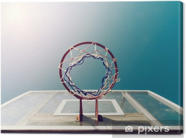 Canvas Basketbal Onder Netto - Thema's
