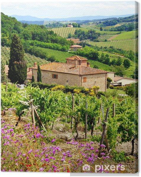 Canvas Bekijk door de wijngaarden met stenen huis, Toscane, Italië - Thema's