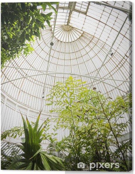 Canvas Belfast Botanic Garden - Europa