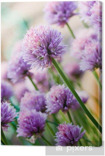 Canvas Bieslook Paarse bloem - Thema's