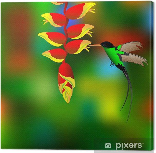 Canvas Bloem met colibri. - Vogels