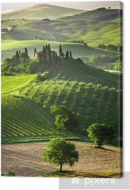 Canvas Boerderij van olijf-en wijngaarden - Thema's